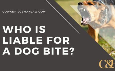 Who is Liable for a Dog Bite in Ohio